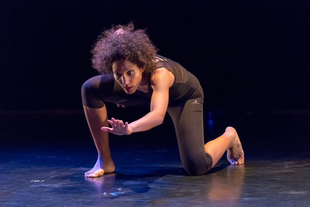 Isabelle Dupré - Afro-Ka'Danse Cie (27)